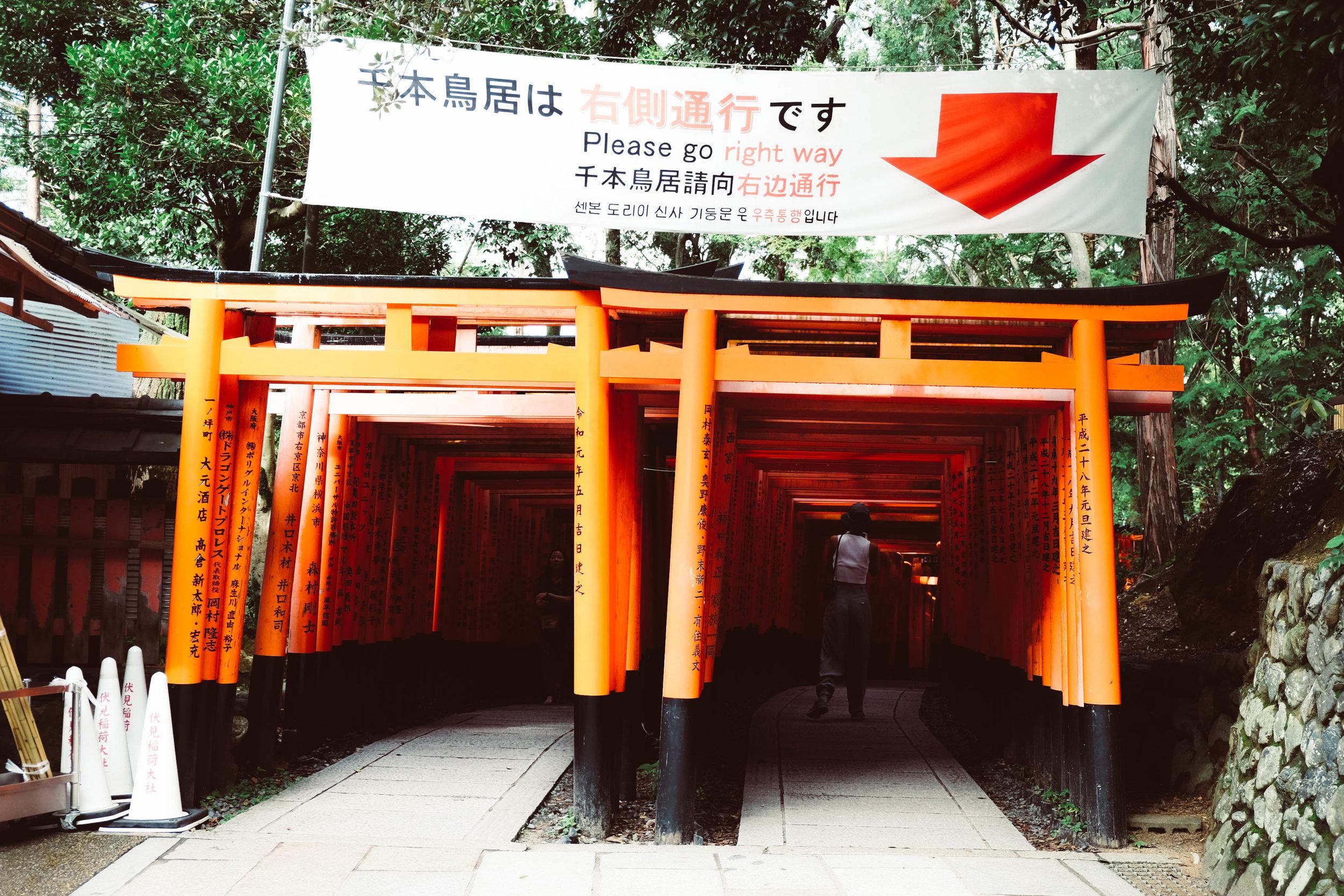 9.3.19_kyoto-93.jpg