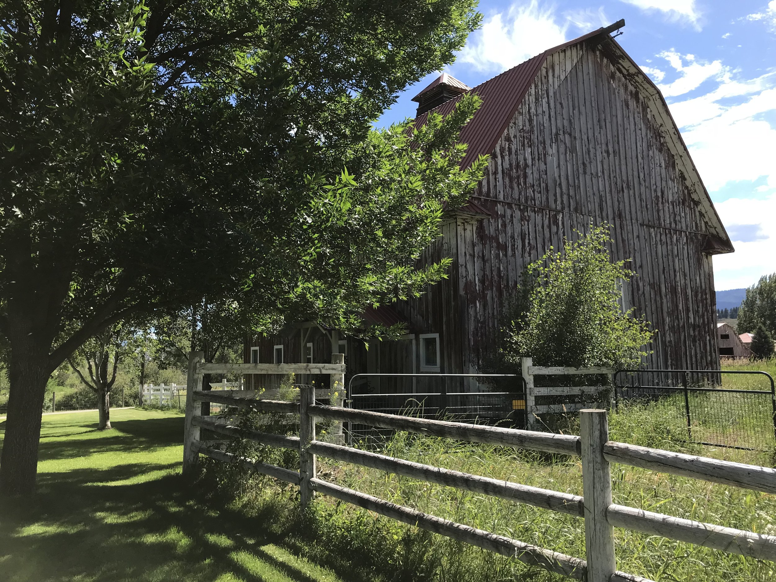 View of the barn from back porch