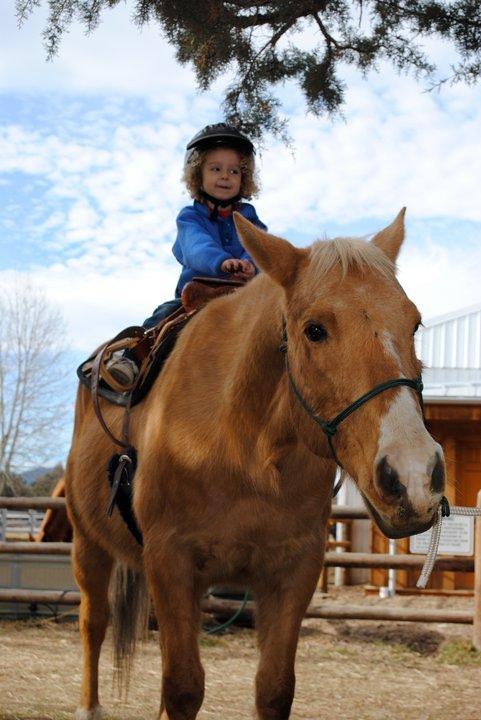 kid-on-horse.jpg