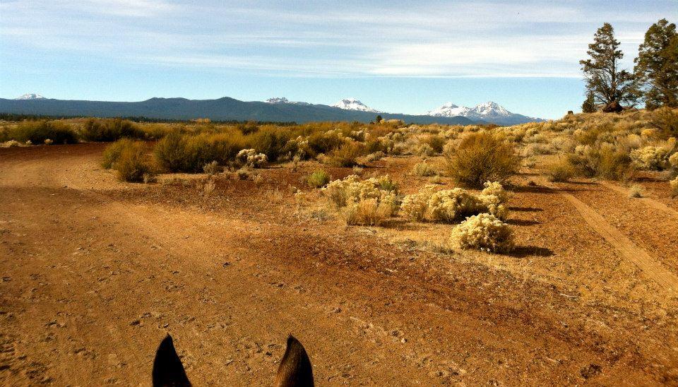 trail-ride-6.jpg