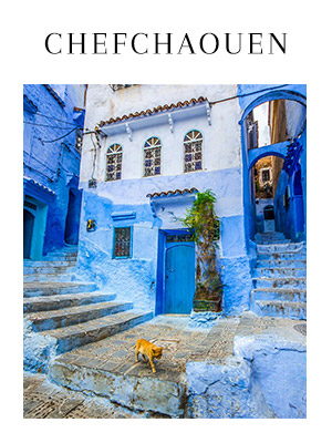chefchaouen-excursion-photo-video-retreat-morocco.jpg