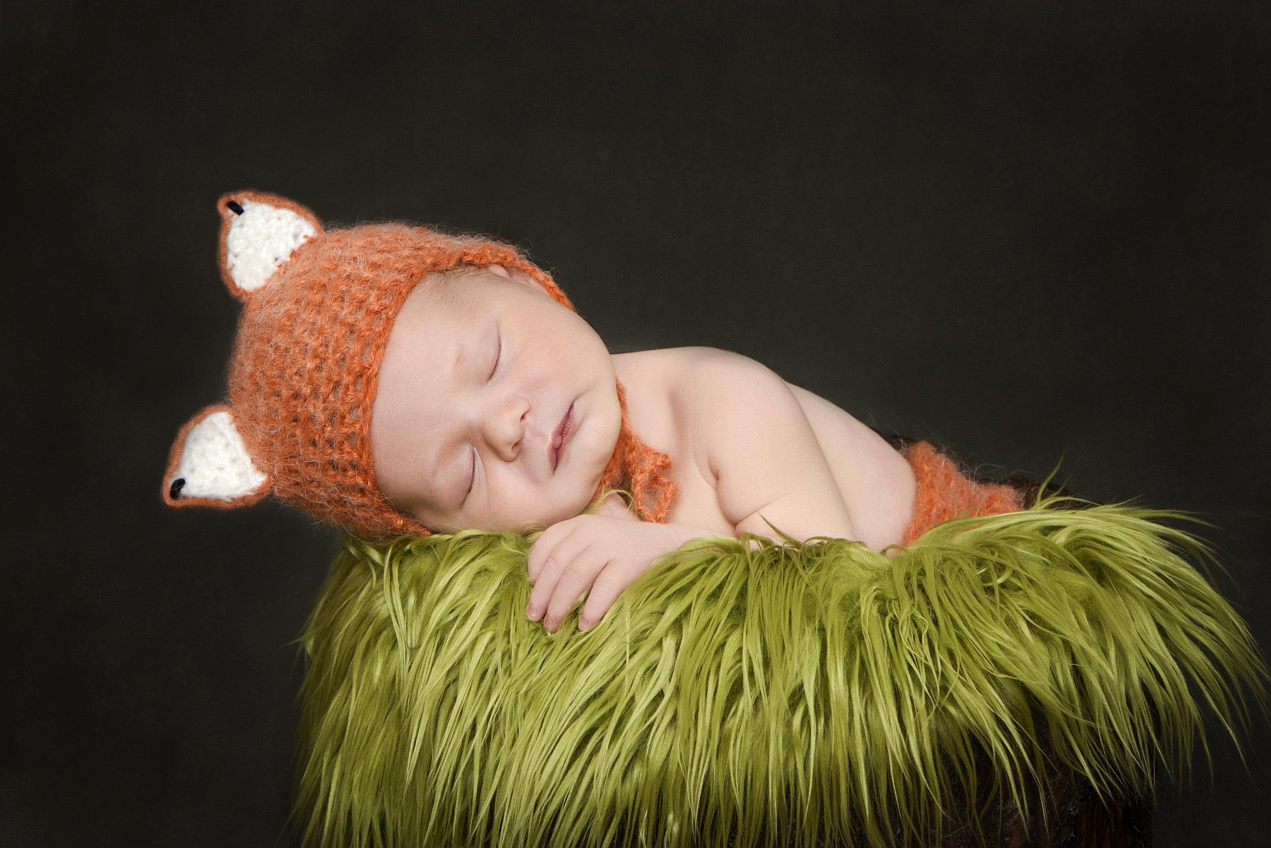 Newborn Fox.jpg
