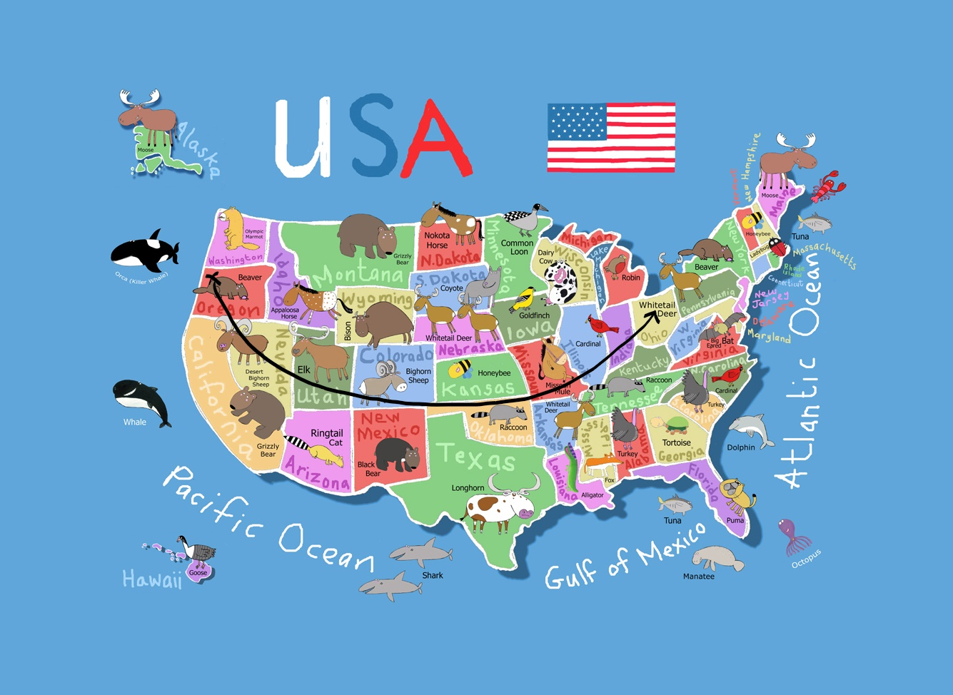 Inkeddetailed-cartoon-map-of-the-usa_LI.jpg