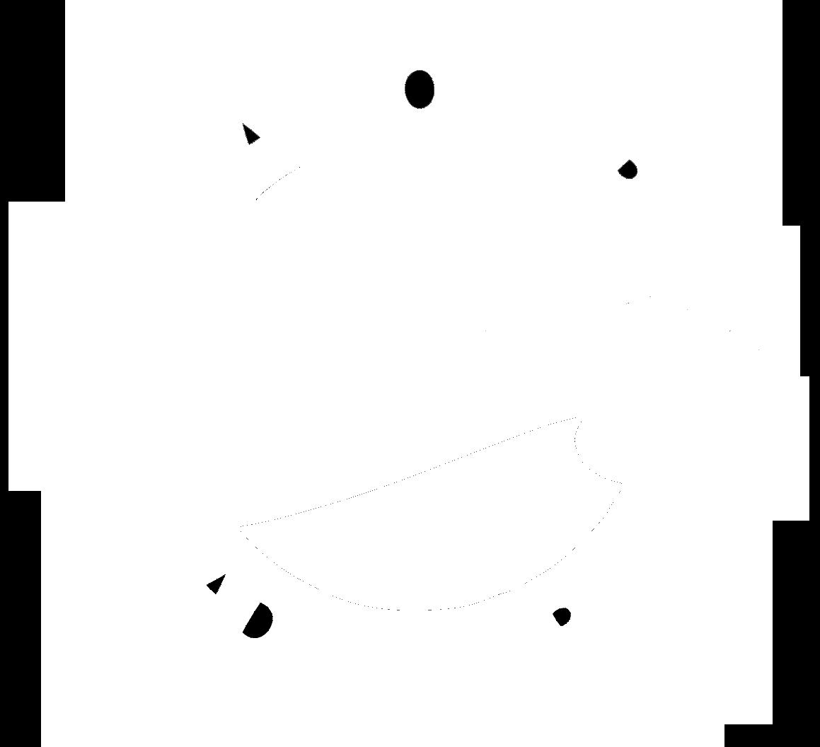 vwa_logo white clear .png