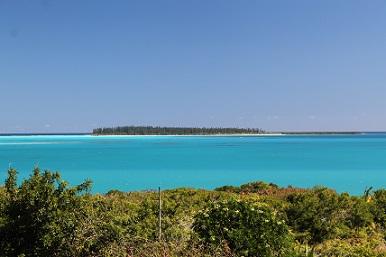 View-Brush-Island.jpg