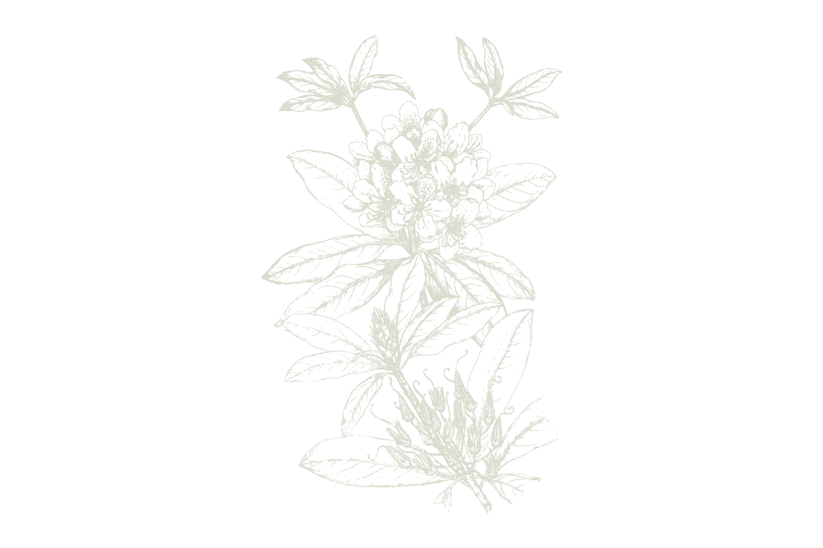 30Keyes_Botanicals_UnitTypes_Roof-Garden_20180831.png