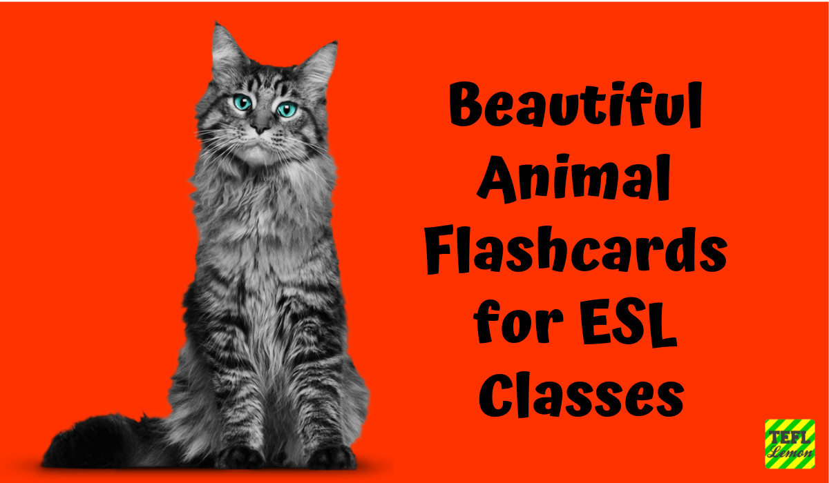 Animal Flashcards for ESL Classes.png