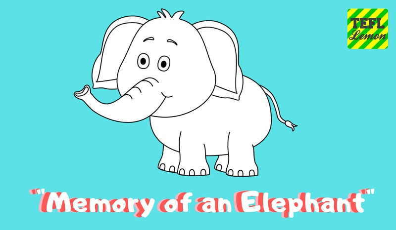 Memory of an Elephant800.jpg