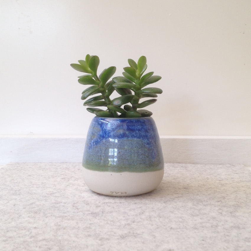 little succulent vase by suzi poland sm.jpg