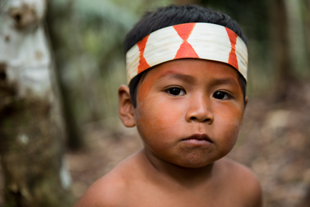 A young Matsés boy joins his family in the healing forests, the learning starts young!