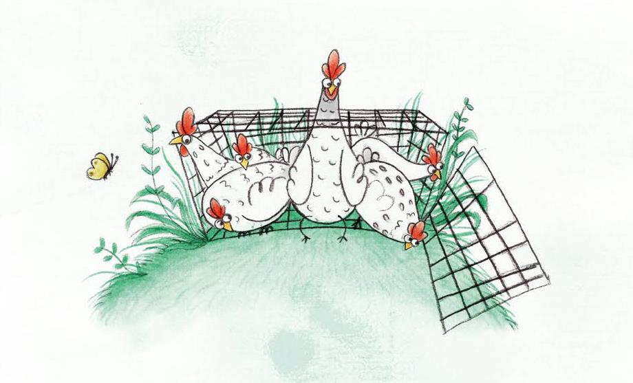 illustration used with permission from the publisher