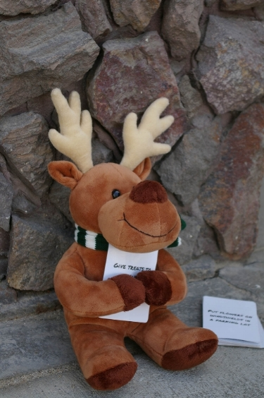 Randy the Reindeer is a stuffed toy with a purpose and he is on a mission to make kindness a tradition! Each day in December, Randy the Reindeer holds a Kindness Card with a kindness challenge for the day. Simply grab a Kindness Card from the stack, place it in Randy's arms, and he is ready! -