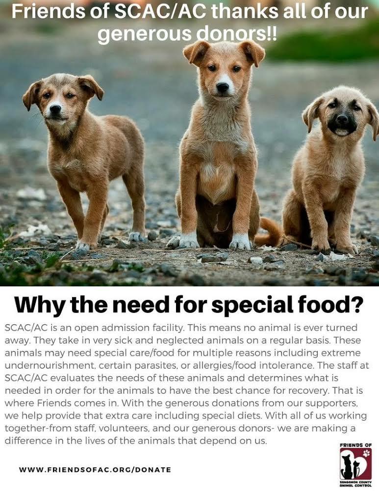 FOOD DONATIONS - SCAC.jpg