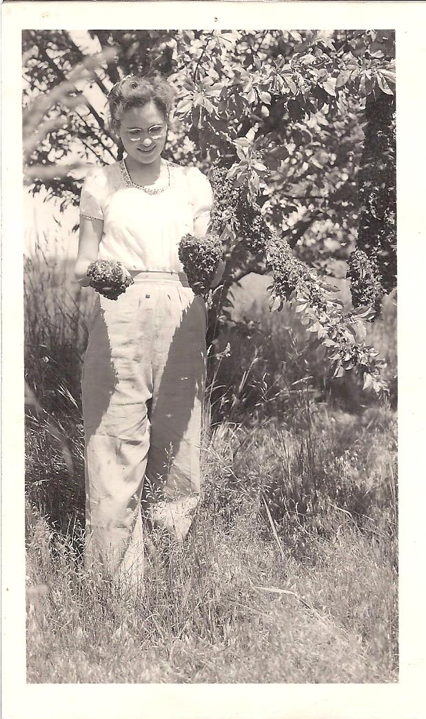 Frances with bee swarm