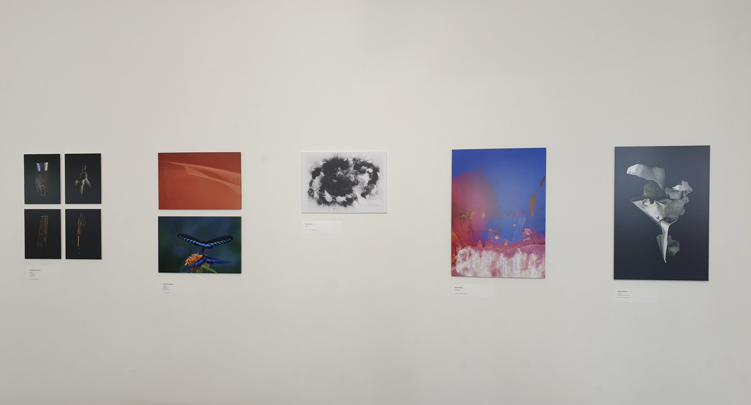 Deep Water Exhibition 2019-89.jpg