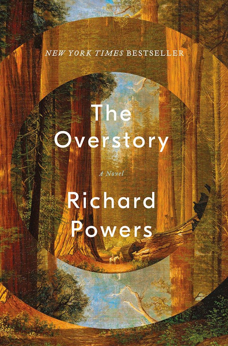 the overstory.jpg