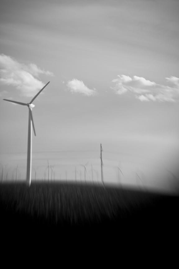 Wind_8463.jpg
