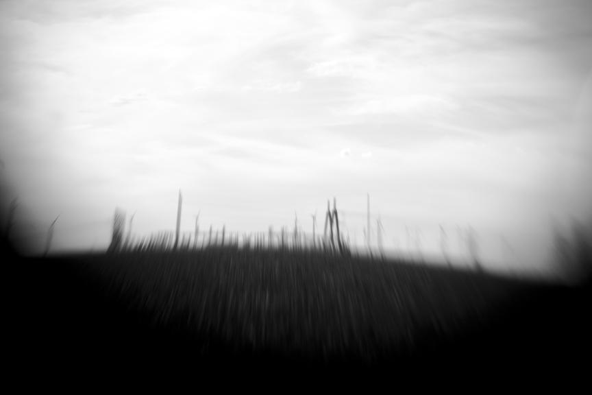 Wind_8474.jpg