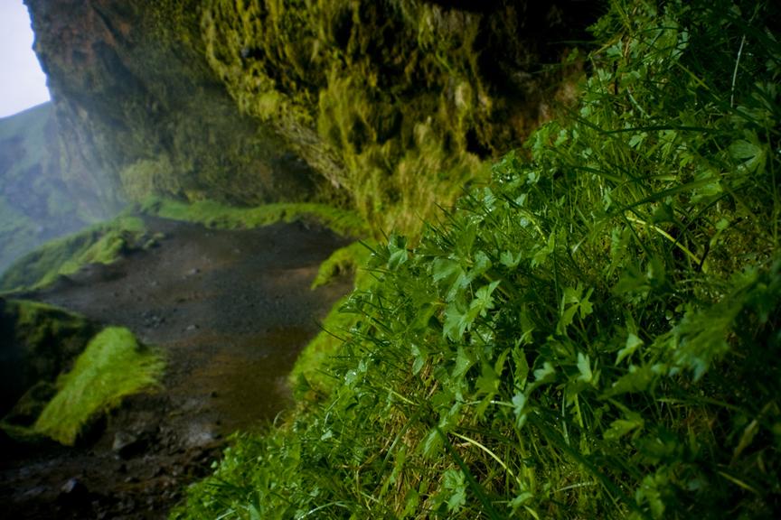 Iceland_4376.jpg