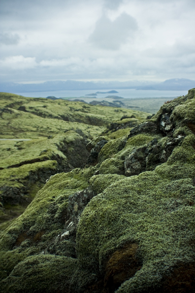 Iceland_4632.jpg