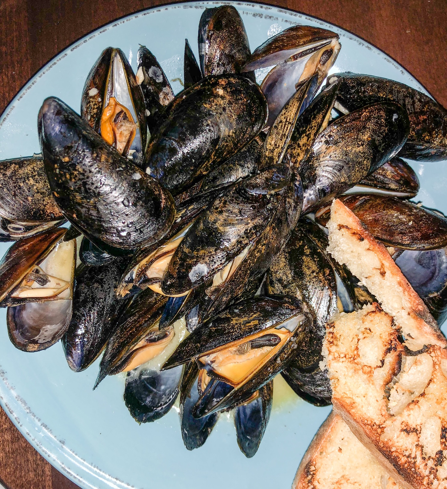 sea-level-mussels.JPEG