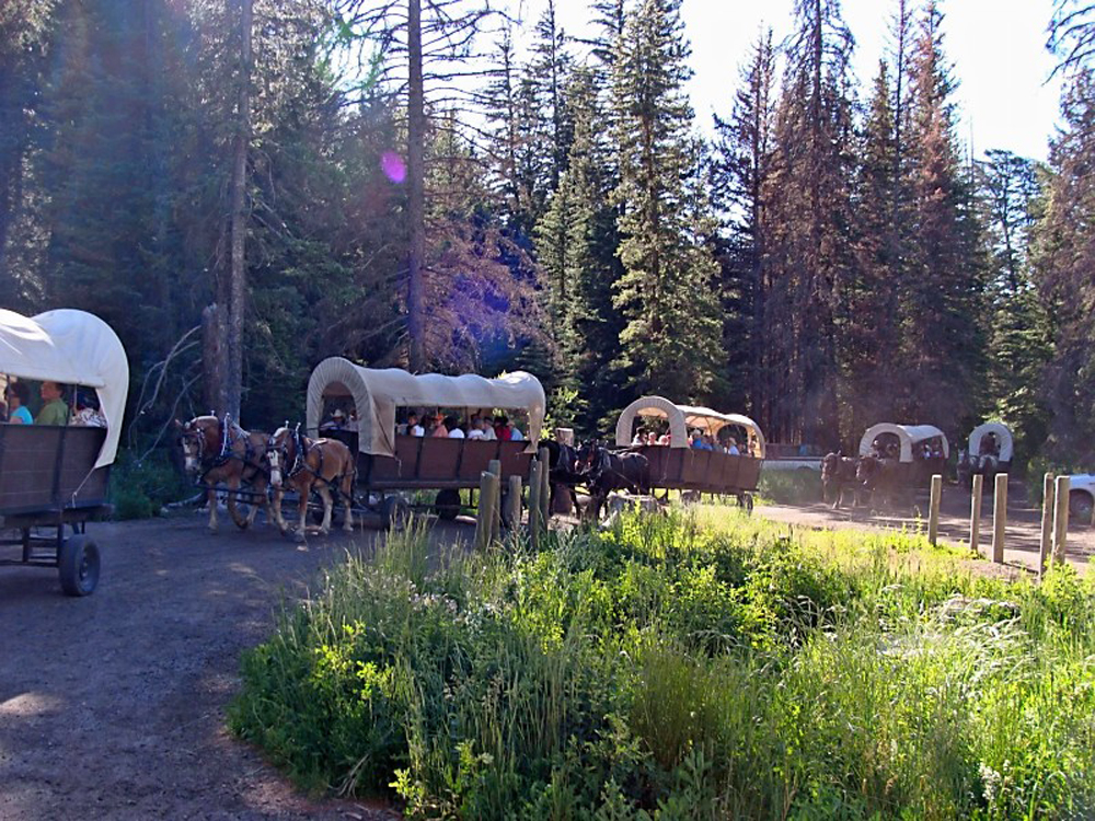 North America_WY_Grand Tetons NP_wagons 2_KV.jpg