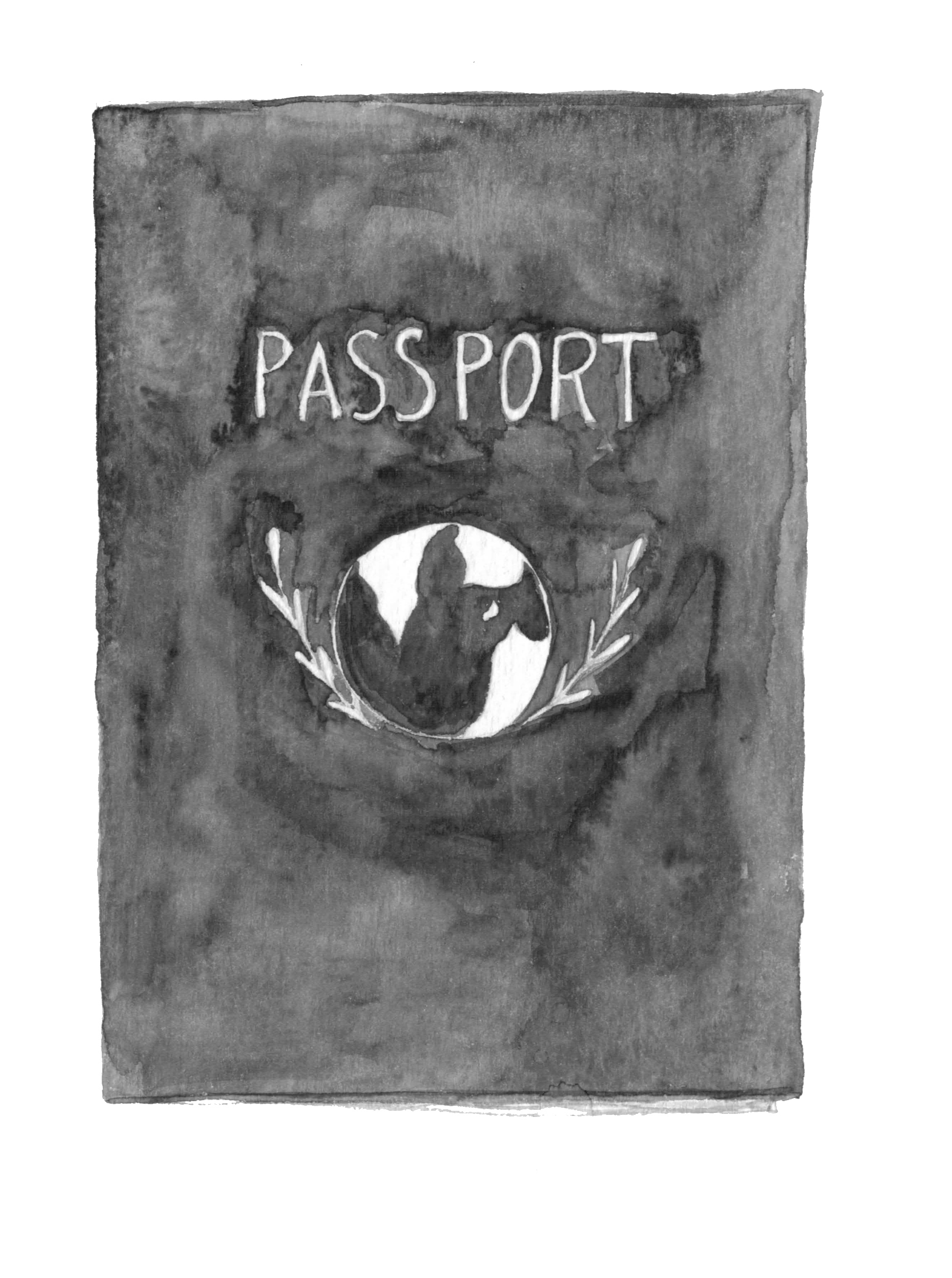 passport copy.png