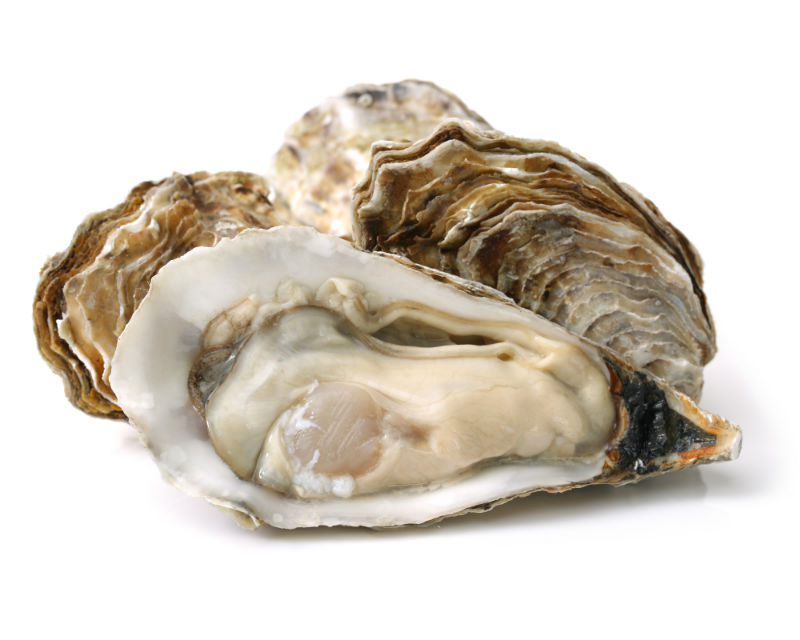 The-world-is-my-oyster.jpg