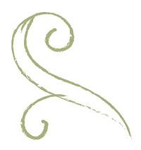swirl-web-opposite.jpg