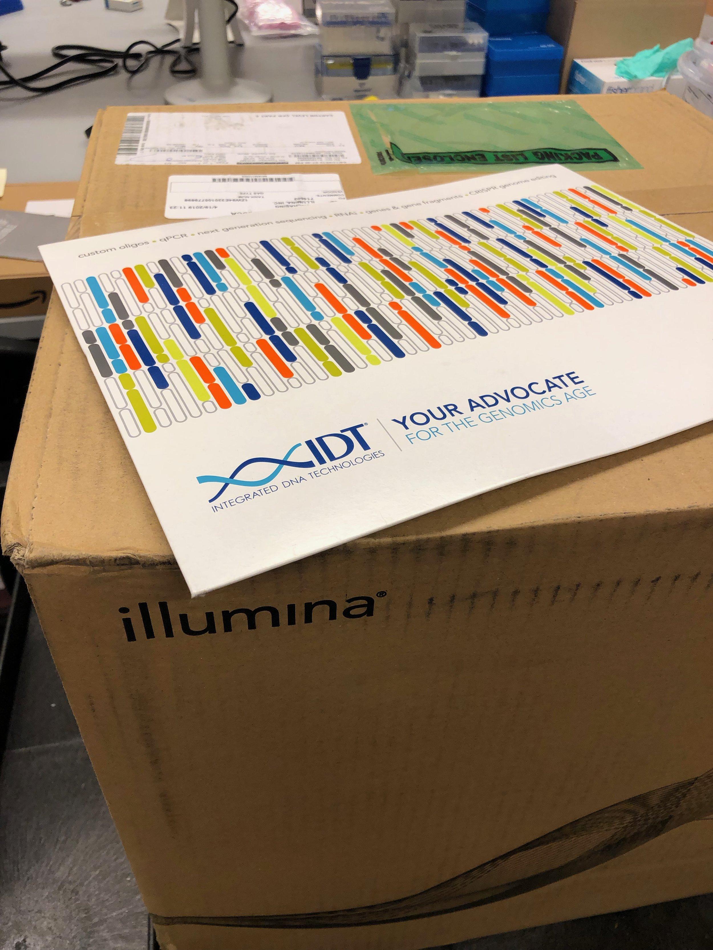 First Illumina and IDT order