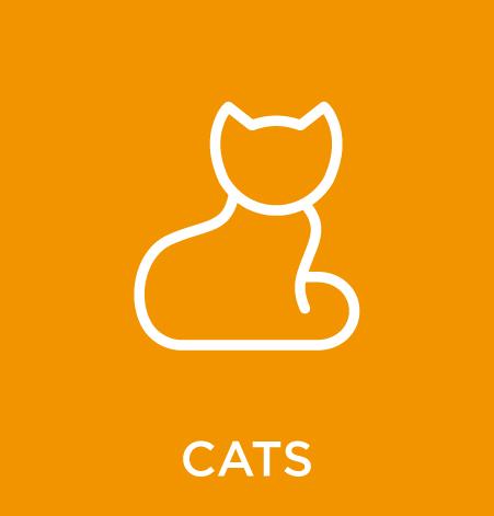 AAPS-CATS.jpg