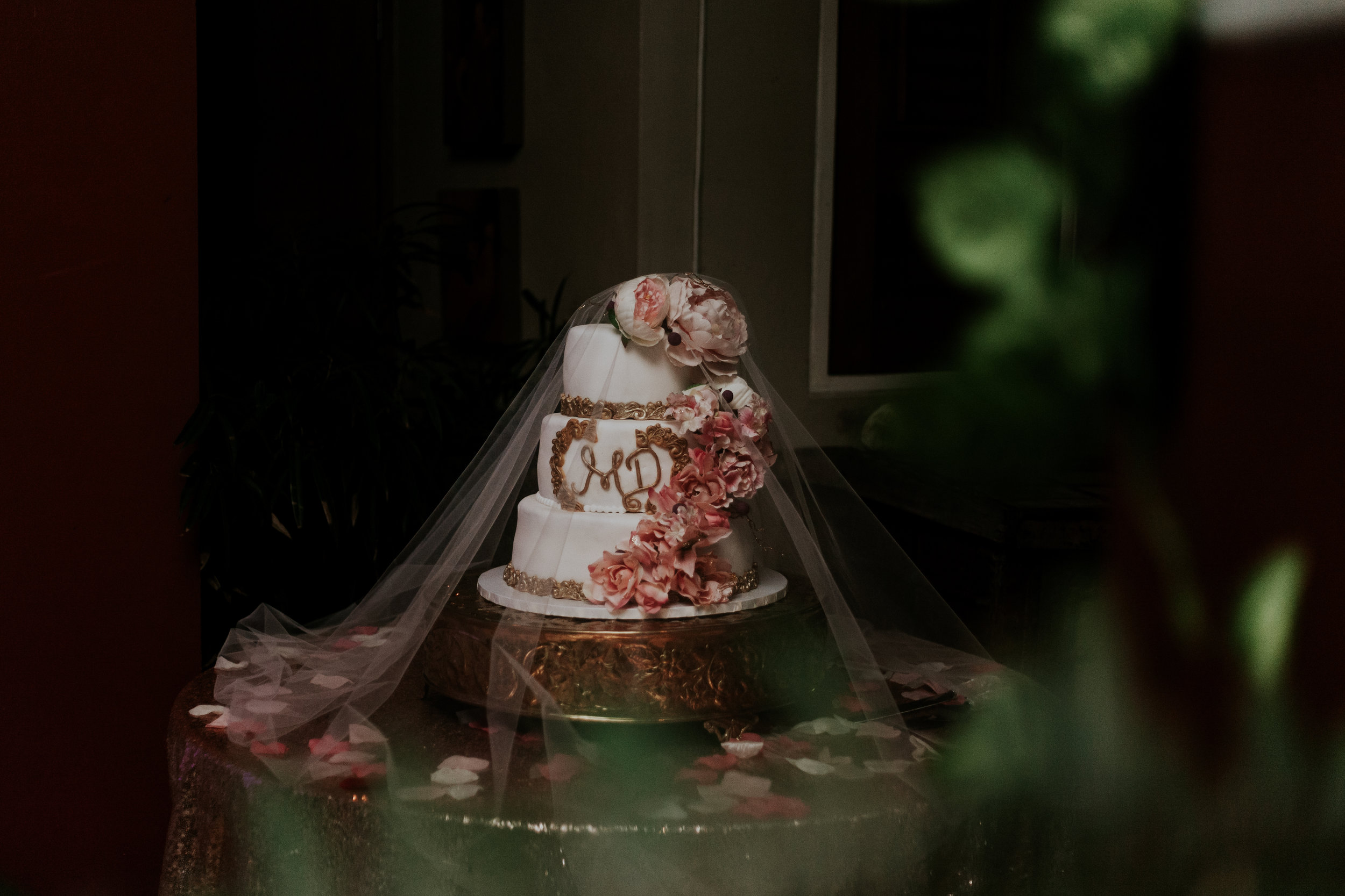 Our Wedding (The Campbell's)-263.jpg