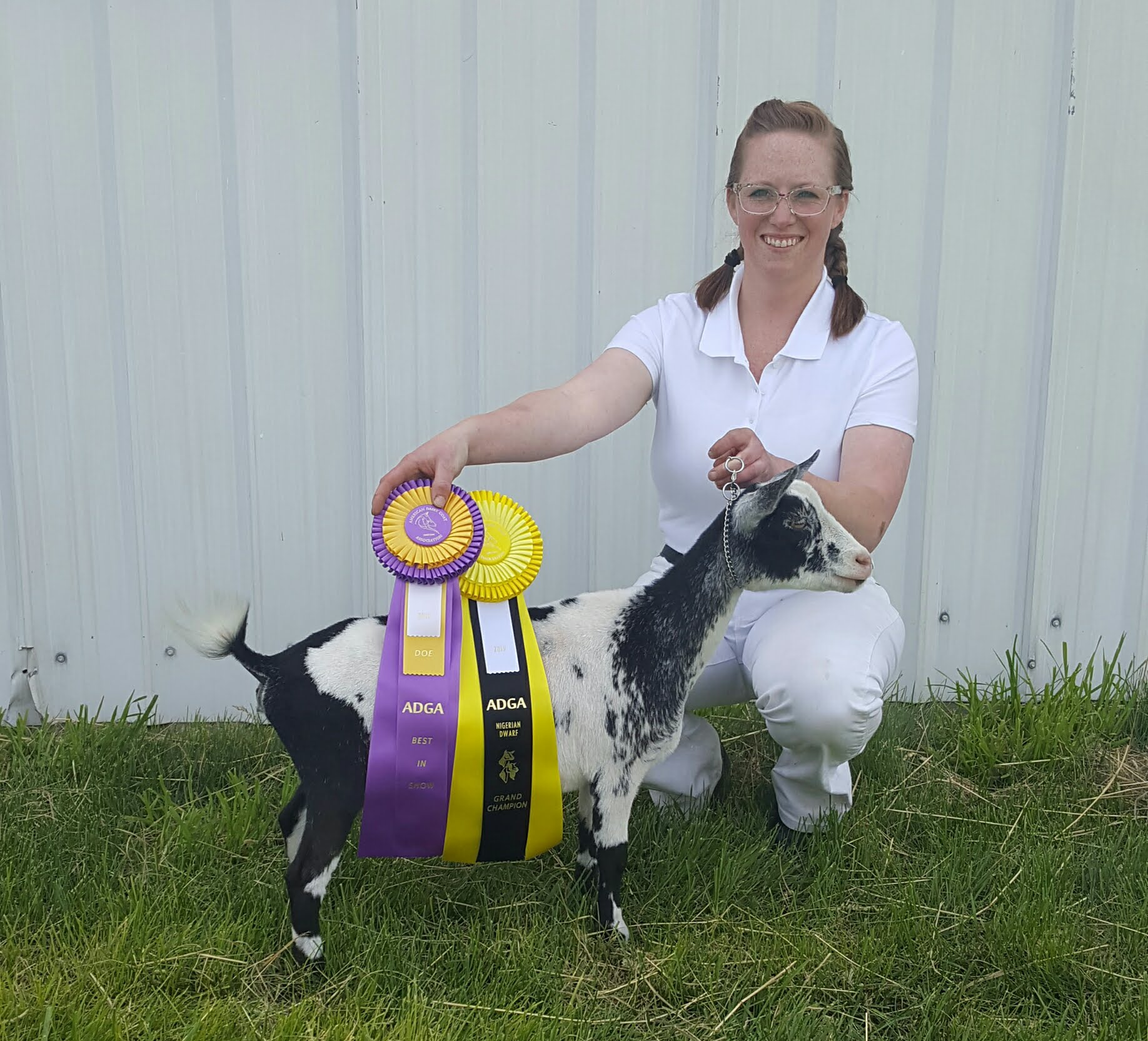 June 22, 2019 Bitterroot Dairy Goat Association 3rd annual ADGA show