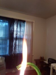Green Twizzler Straw burning