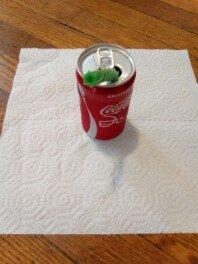 green Twizzler Straw in soda