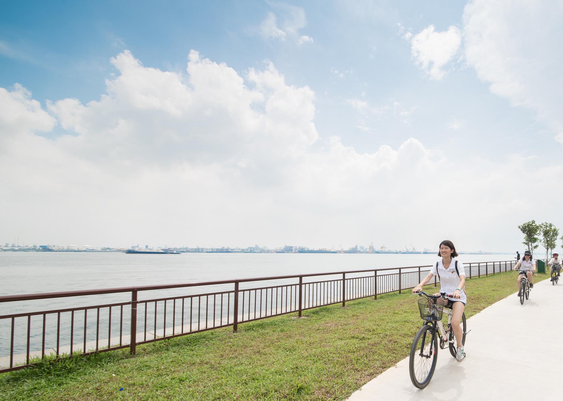 Silver YOLO - Cycling Programme
