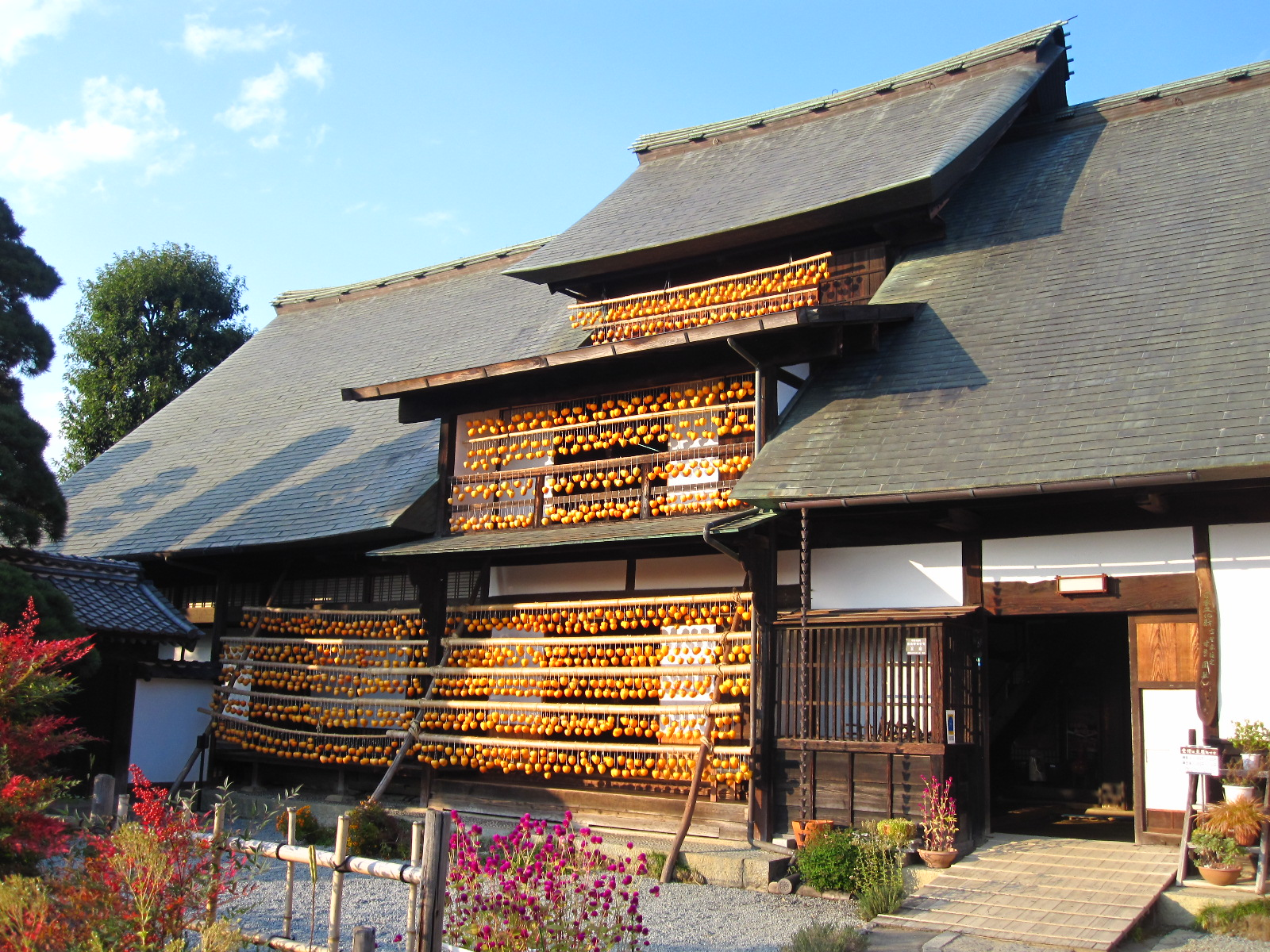 Persimmons hanging to dry under the eaves of the  Kanzo Yashiki , a grand  Koshu Minka  building.