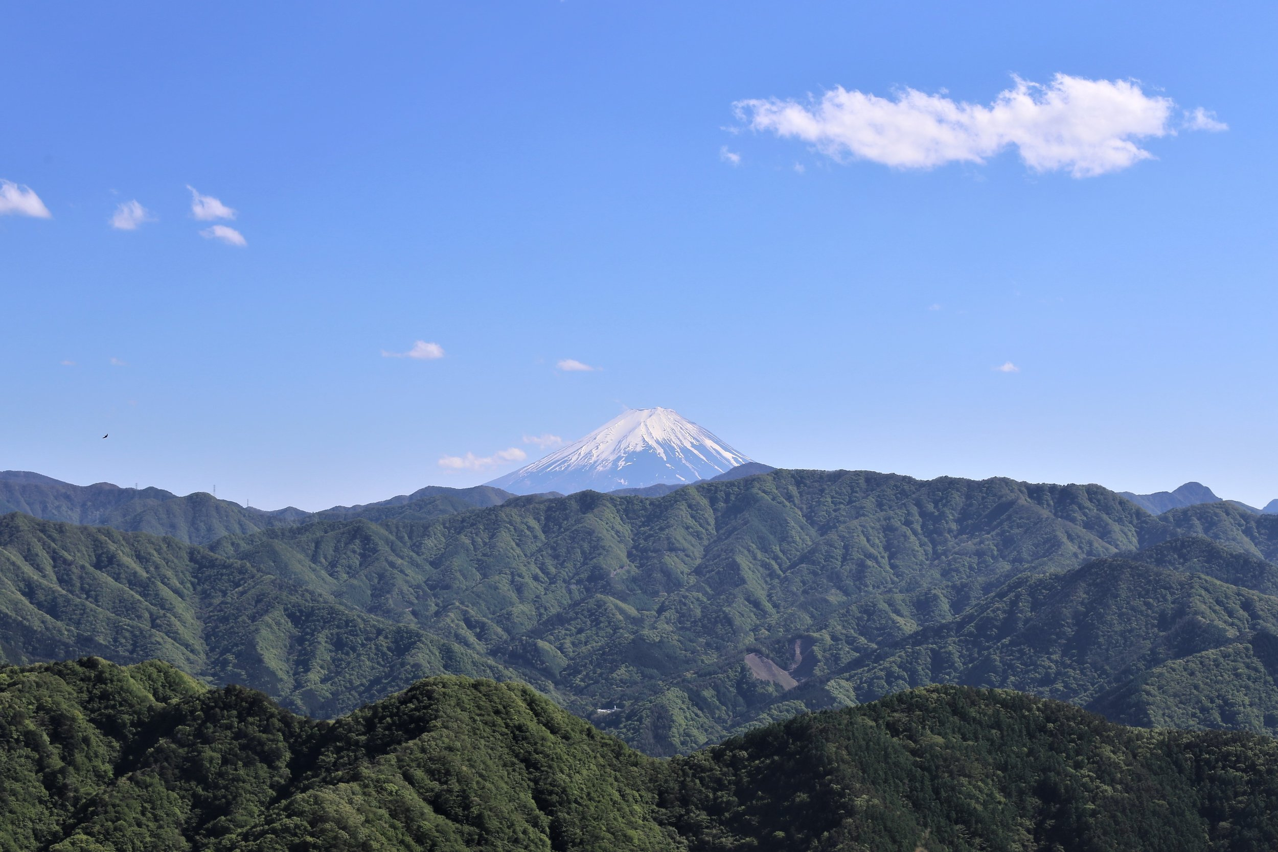 Koshu Valley_Japanese Wine Region_Mt Fuji.JPG