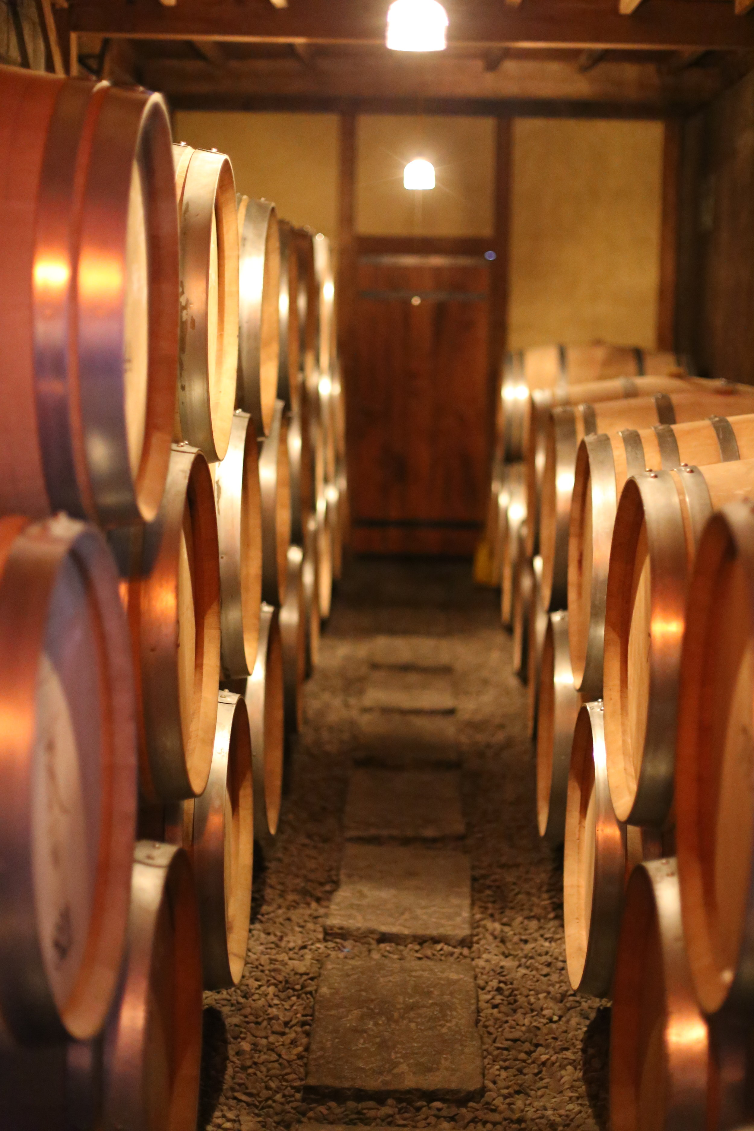 Koshu Valley_Japanese Wine Region_Oak wine barrels.JPG