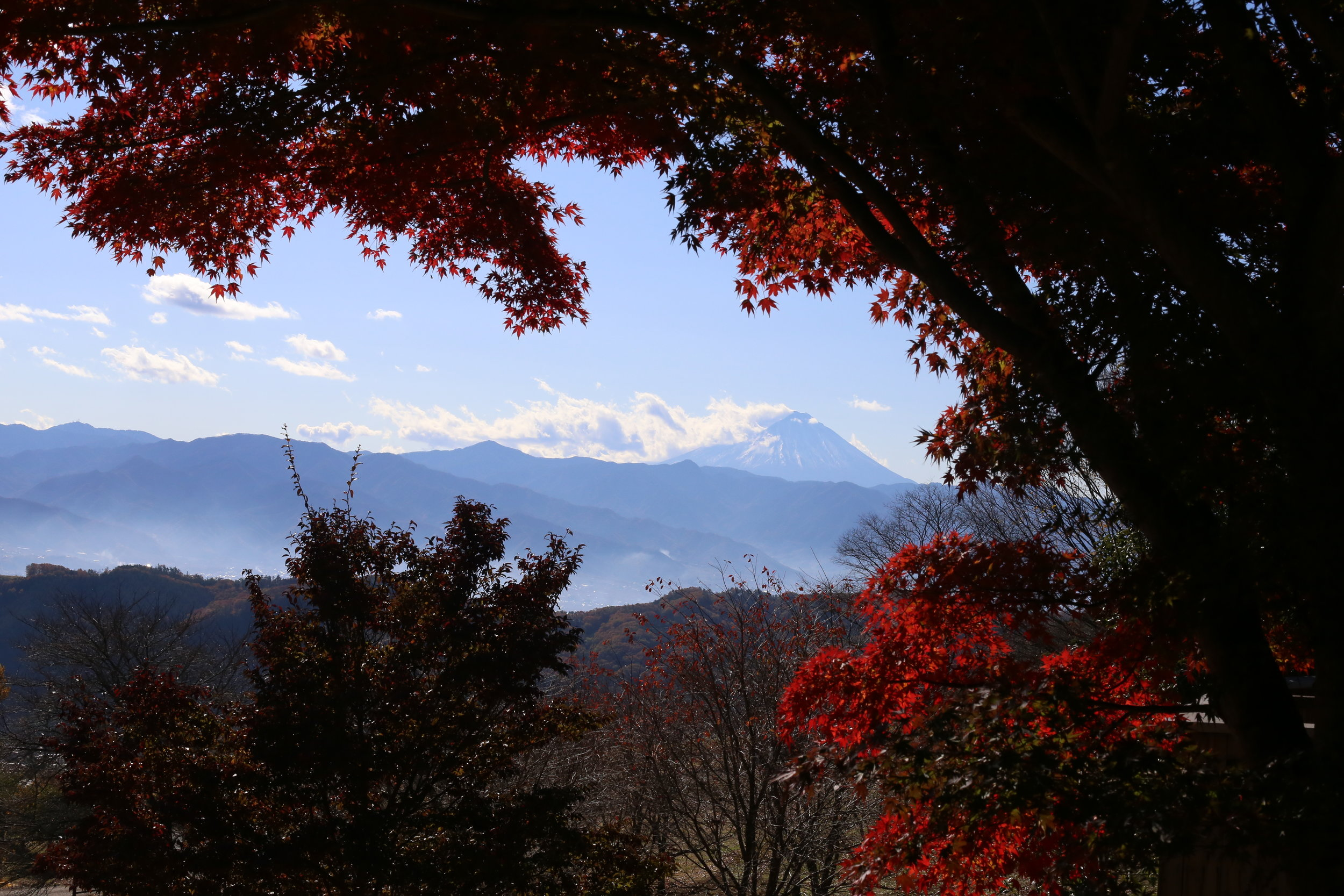 Koshu Valley_Japanese Wine Region_Valley view from north_Autumn.JPG