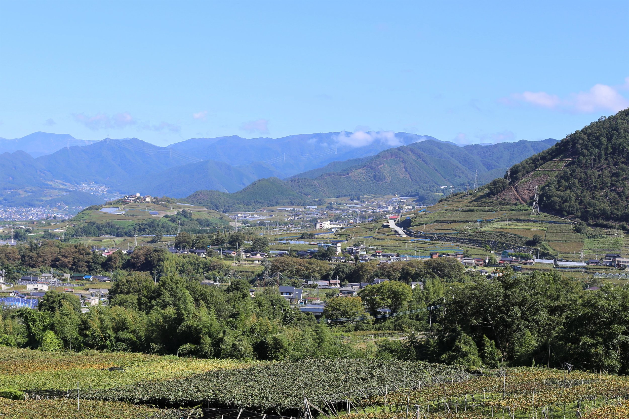 Koshu Valley_Japanese Wine Region_Valley view_Looking North.JPG