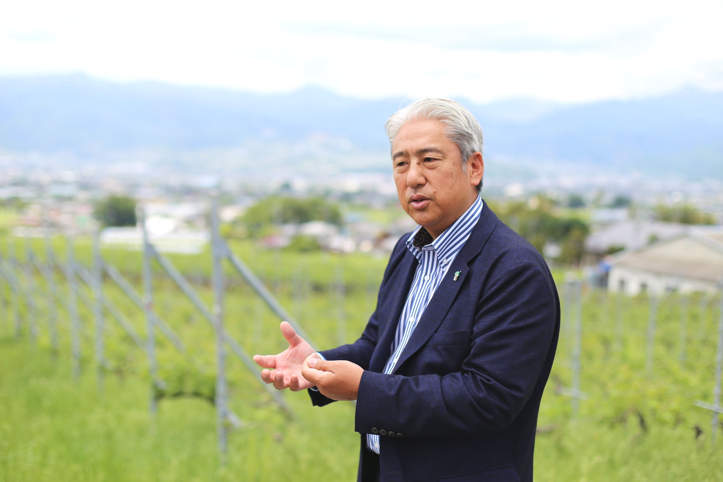 Kida-san Vineyard.JPG