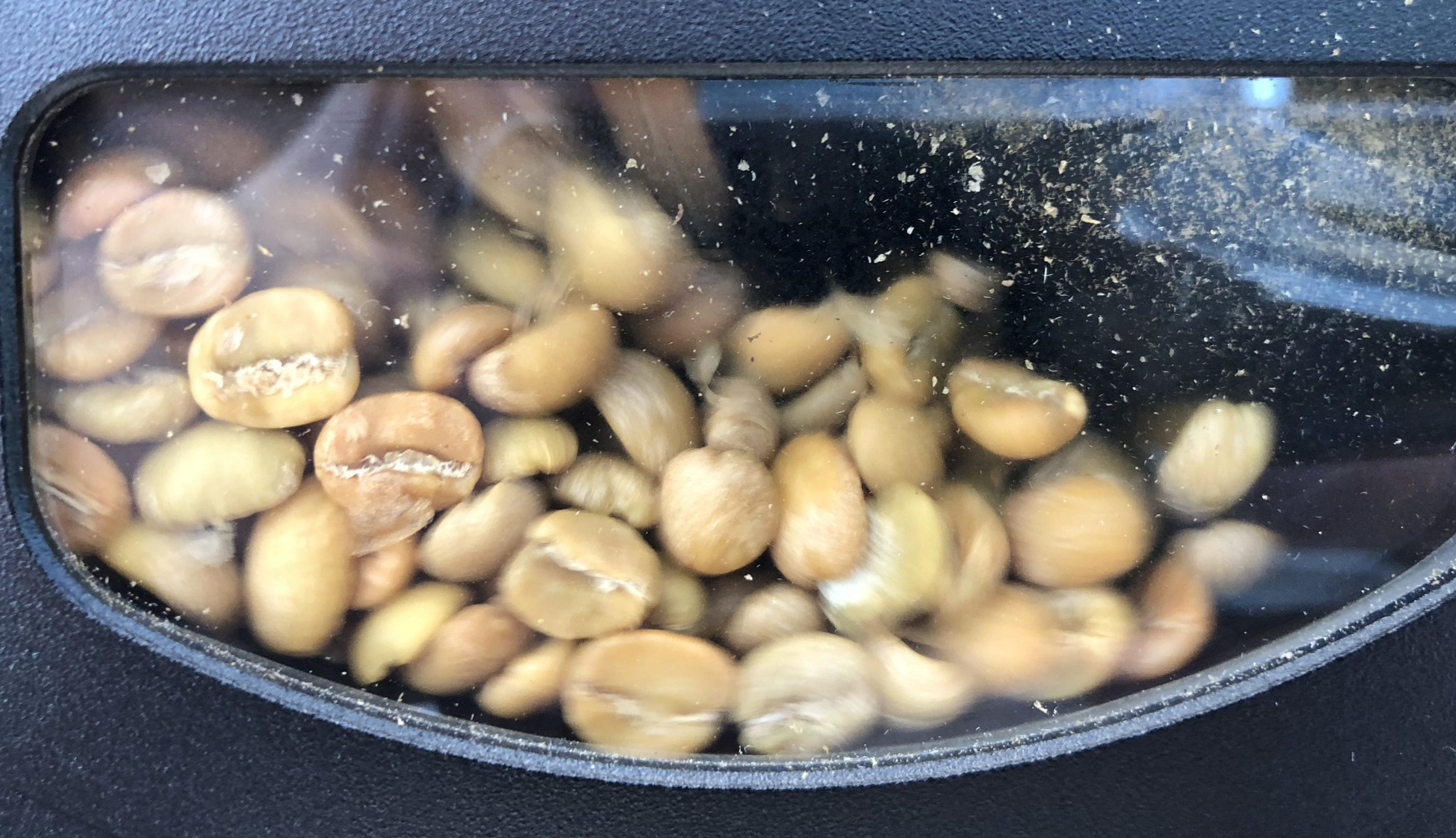 Roasting-Specialty-Coffee-1.jpg