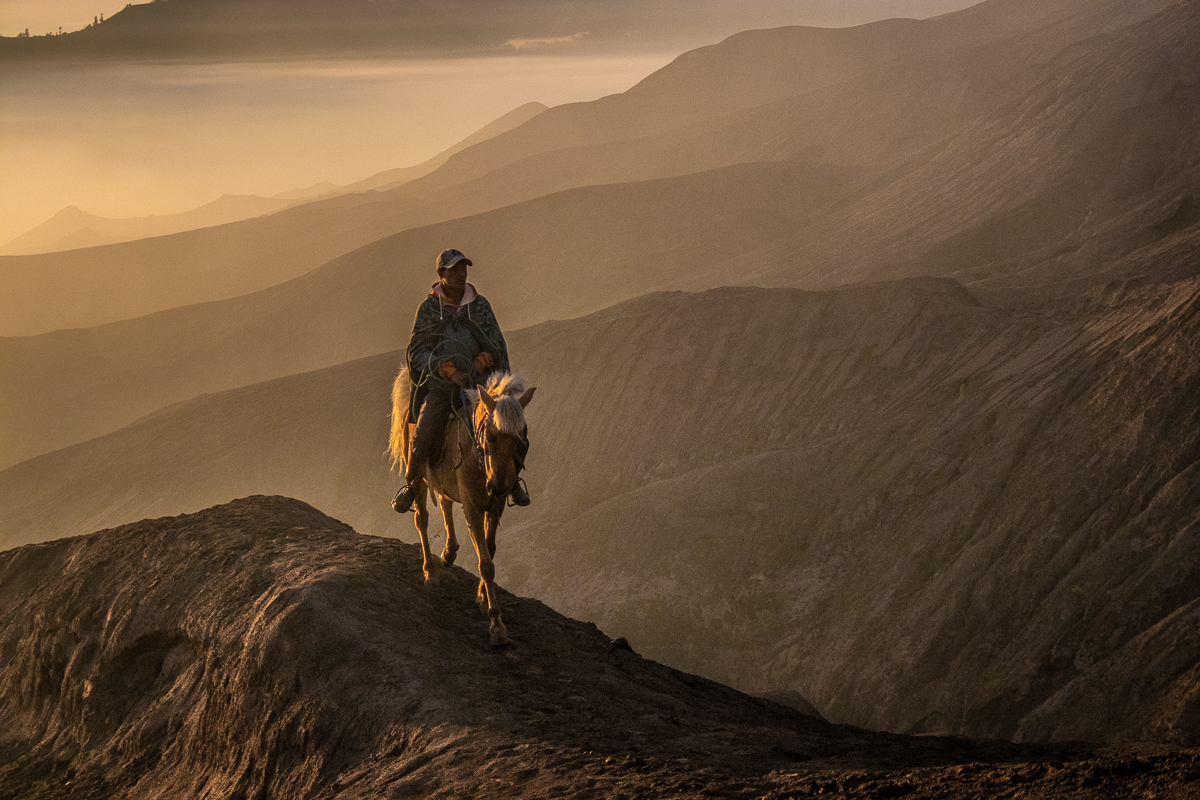 "The best selling print so far! ""Horse-rider at Dawn"", available in the online shop."