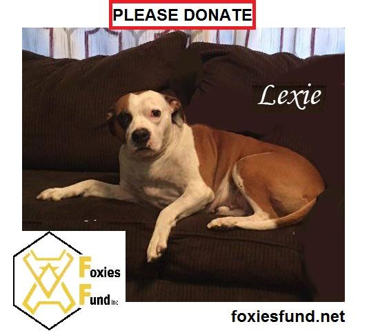 Lexie.jpg