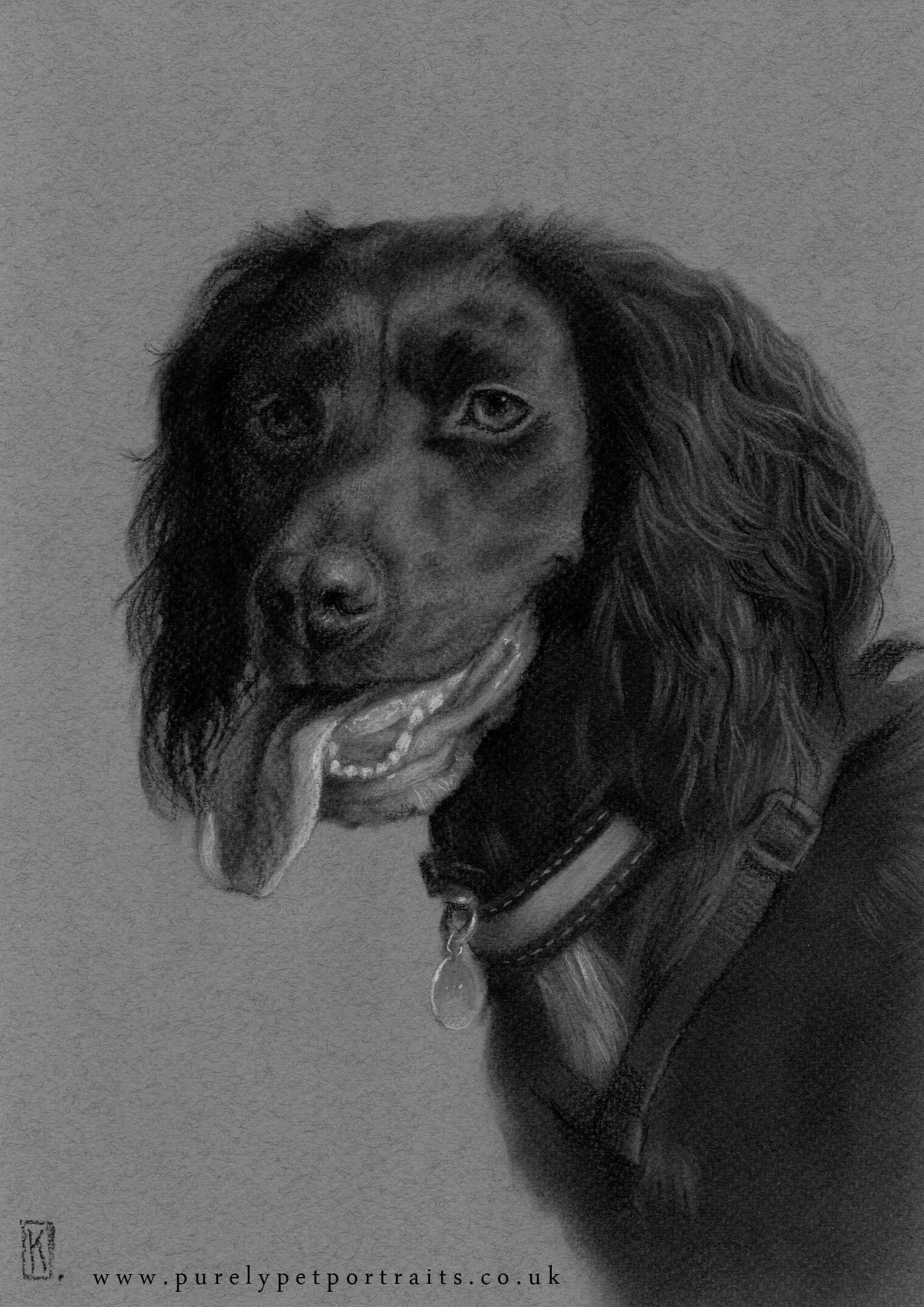 Portrait of Ruby by www.purelypetportraits.co.uk