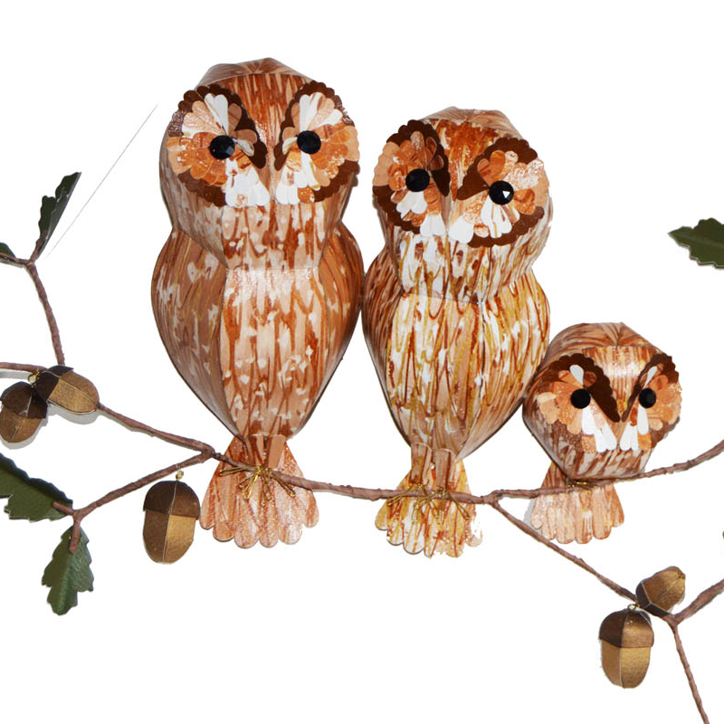 Tawny family on an oak tree branch, adorned with golden acorns