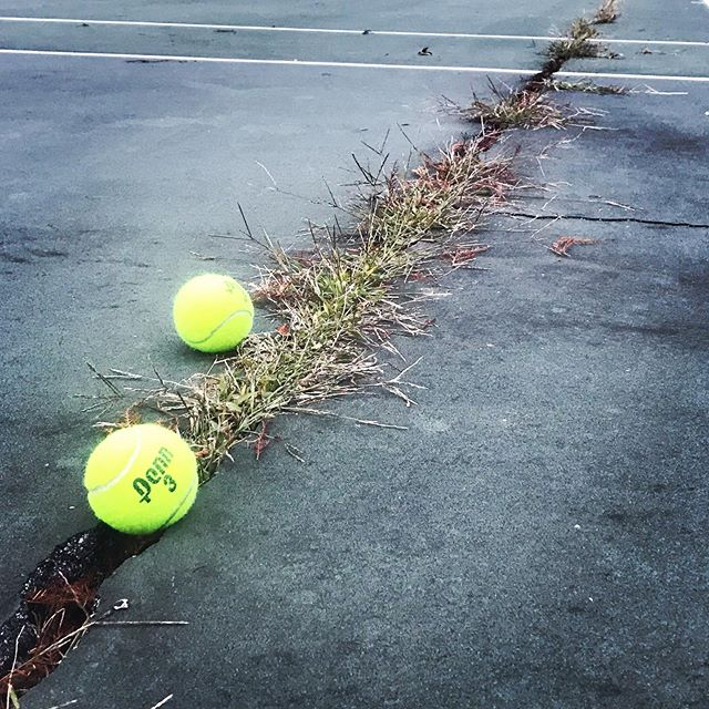 You know Fall has arrived when the grass in the cracks of your fave court starts to die! 🎾🌿😂 #parktennis #tennis #playmoretennis #rally78