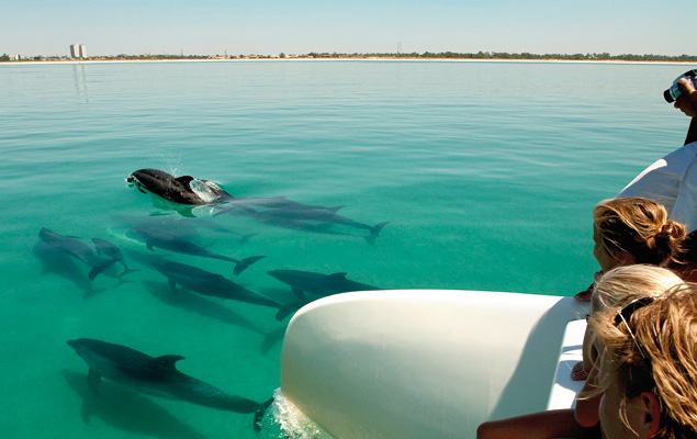 yoga-retreat-sailing-with-dolphins-experience-retreats.jpg