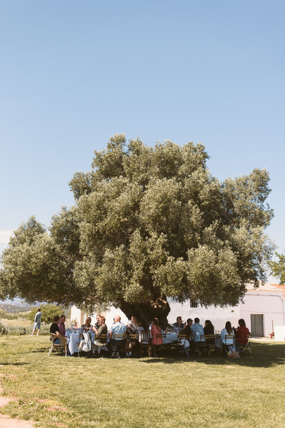 RETREAT_LUNCH_UNEDR_OLIVE_TREE_ALGARVE_Yoga_retreat_venue_Experience-retreats.jpg